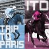 【ジャパンカップ2015】今年の外国馬4頭、イトウ、イラプトらは買えるのか?