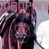 【ジャパンカップ2015】ショウナンパンドラ、最強牝馬に名乗り上げる!