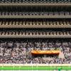 ジャパンカップは荒れるの?歴代人気とオッズから検証してみた!
